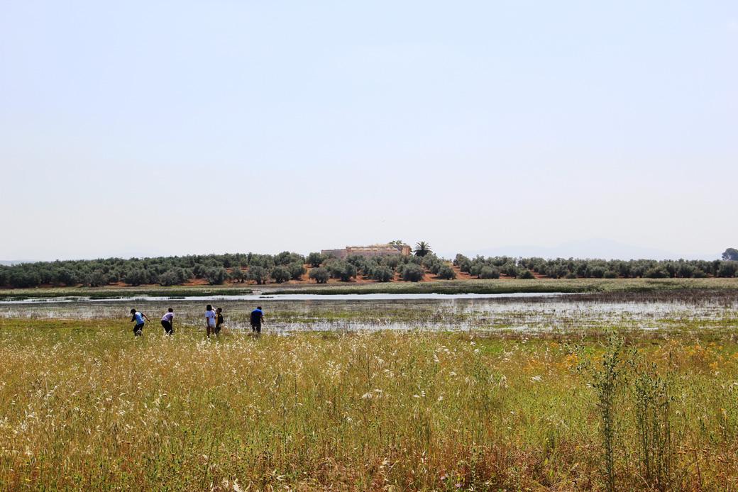 Laguna De Los Arenales