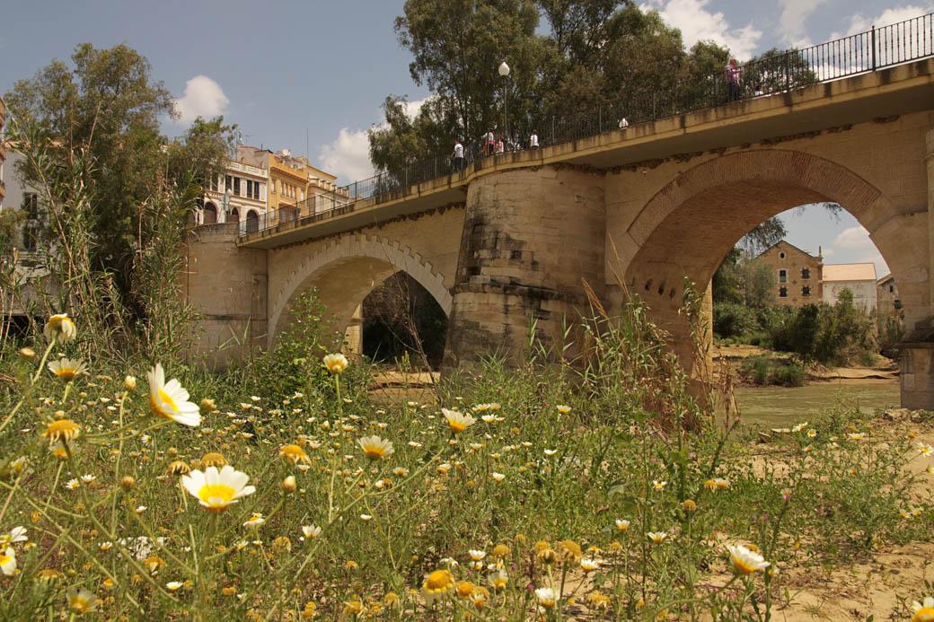 Puente Sobre El Genil